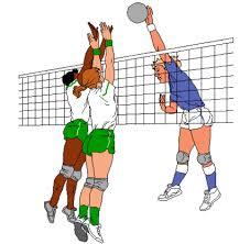 Volley nyheds billede